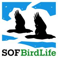 Sveriges Ornitologiska Förening - Birdlife Sverige